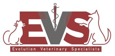EVS Final Logo